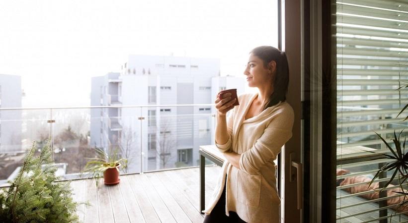 Kaip pasirinkti tinkamus plastinkinius langus savo namams?
